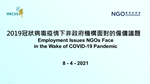 Webinar on Employment Issues NGOs Face in the Wake of COVID-19 Pandemic