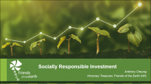 Achieving Social Responsibility in NGOs' Investment