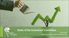 Roles of the Investment Committee
